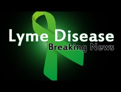 The Next Generation of Testing for Lyme disease and Beyond