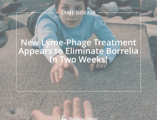 New Lyme-Phage Treatment Appears to Eliminate Borrelia in Two Weeks