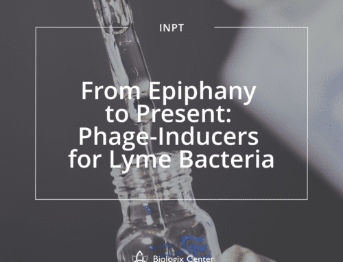 From Epiphany to Present: Phage-Inducers for Lyme Bacteria